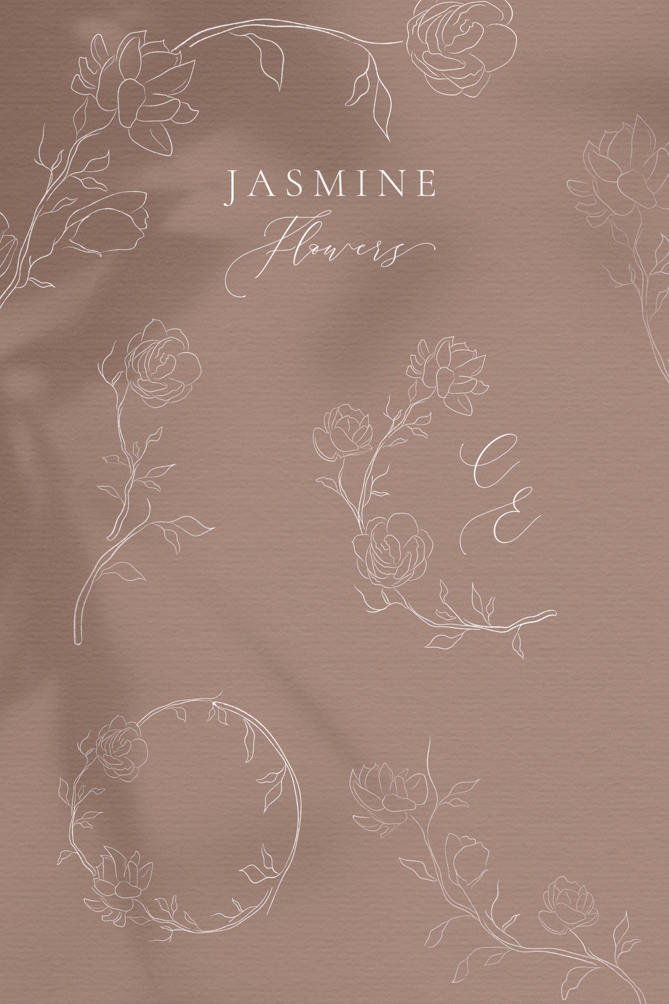 Line drawing White Jasmine Flower illustrations. Wreaths. example image 2