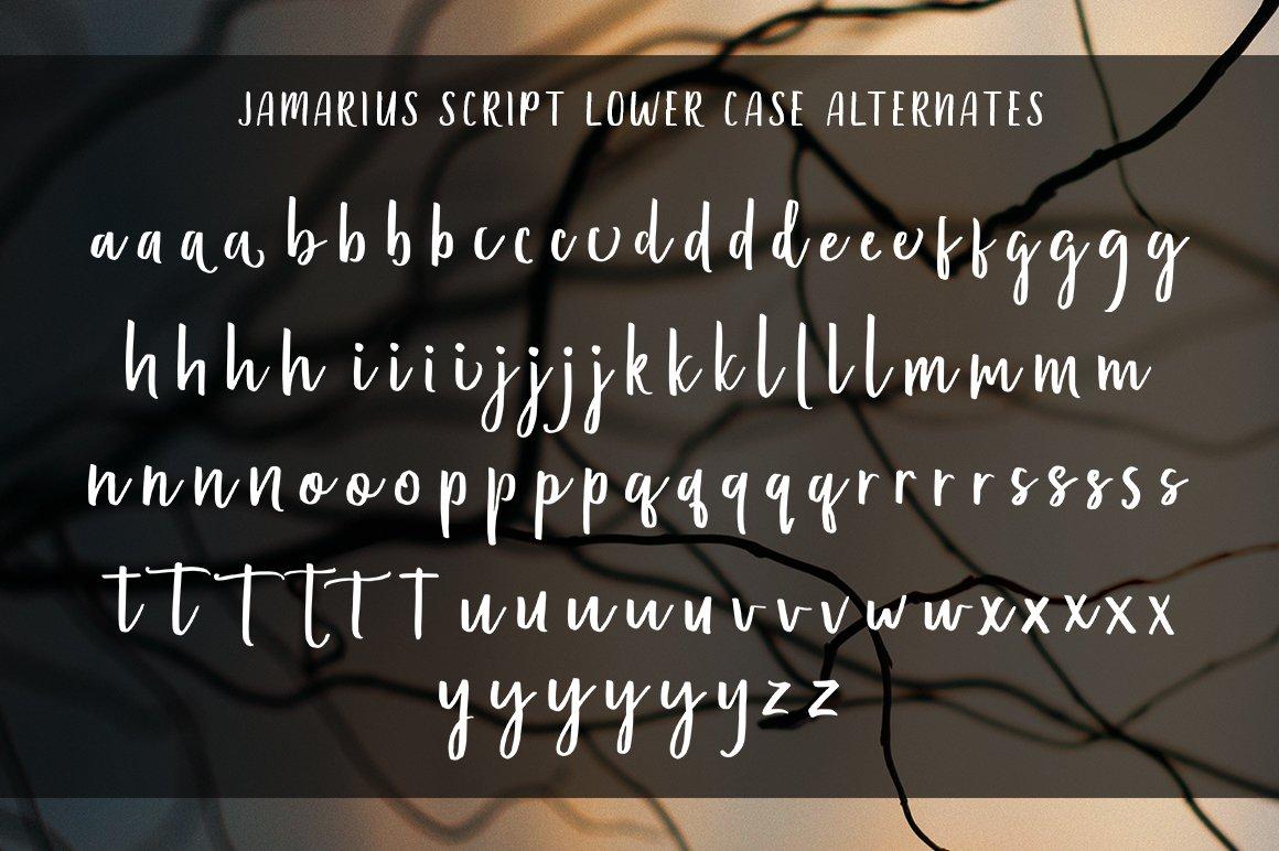 Jamarius Script - A Handwritten Font example image 6