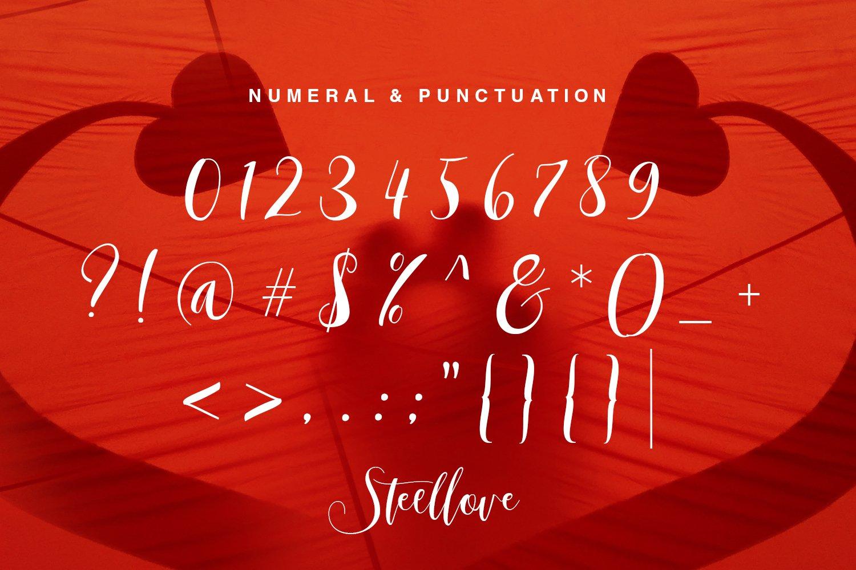 Steellove example image 6