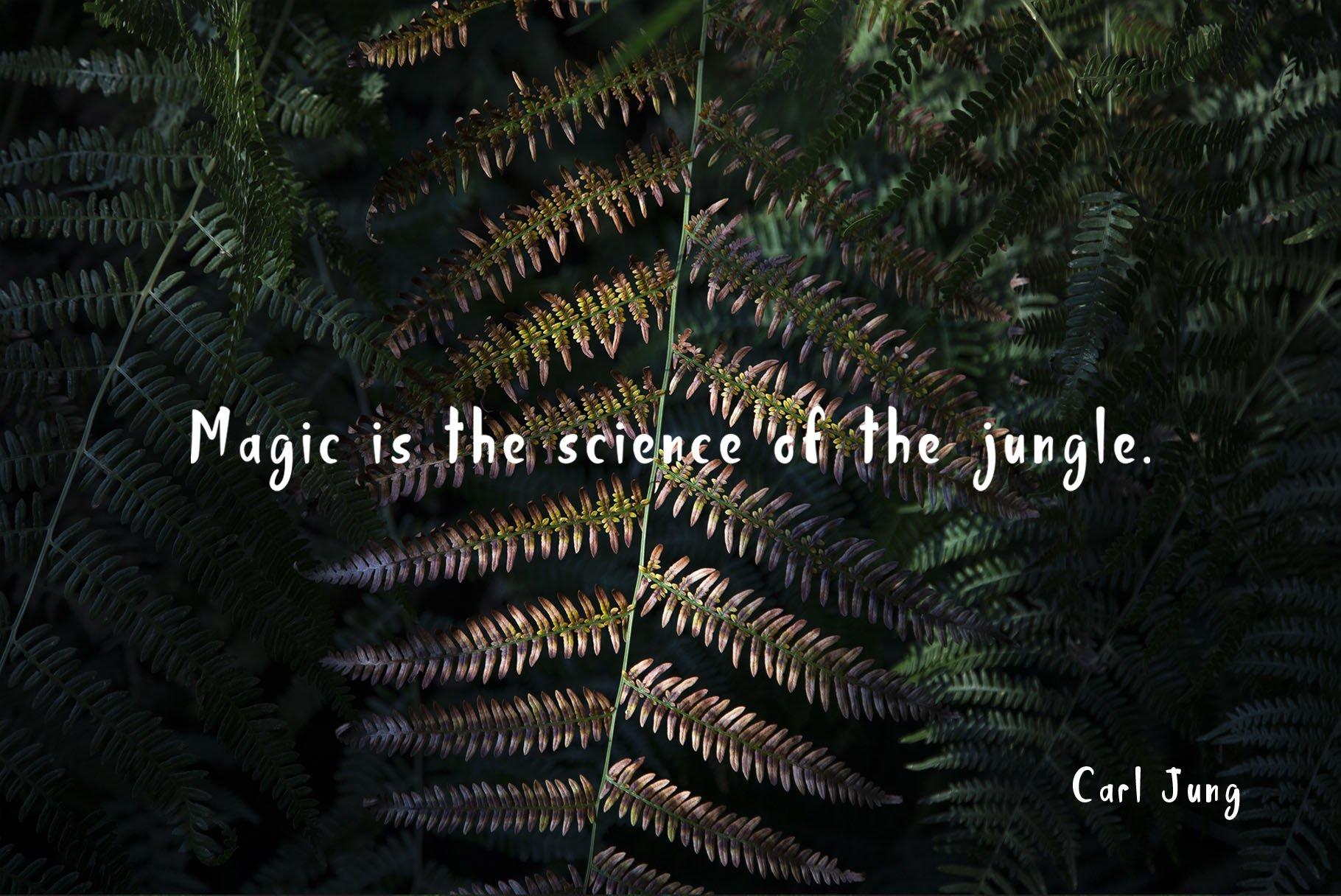 Jungle Display Font example image 7