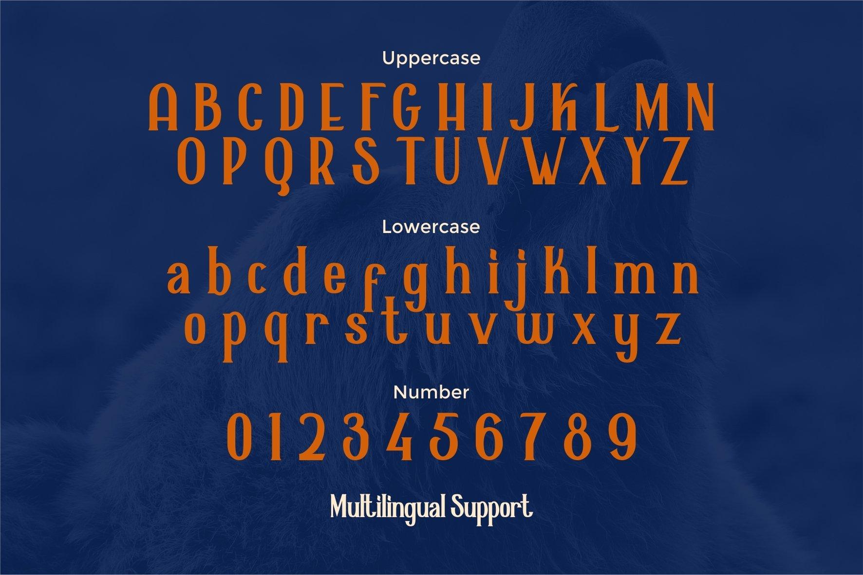 Alaska Typeface example image 4