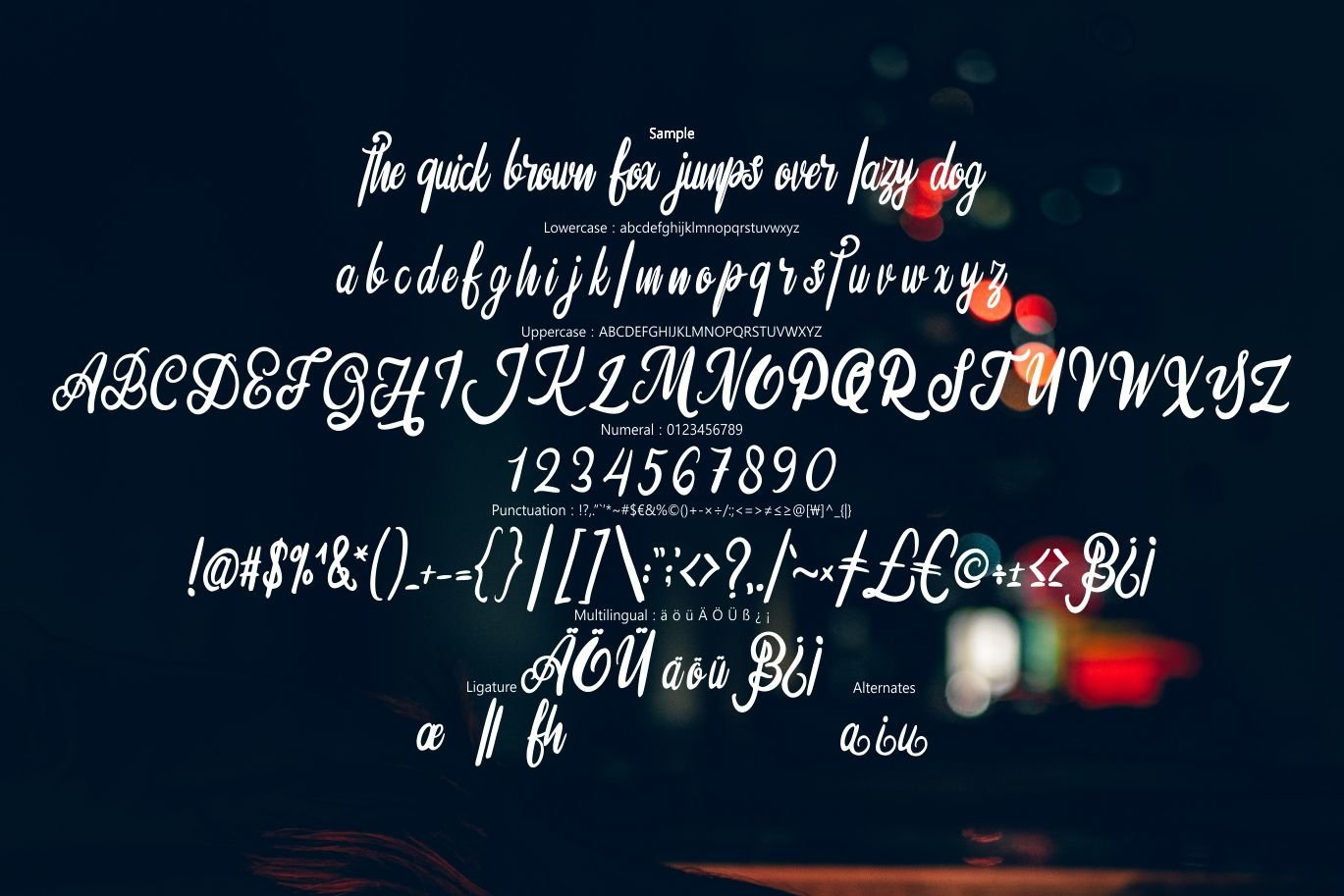 Silfhie | Modern Script Font example image 6