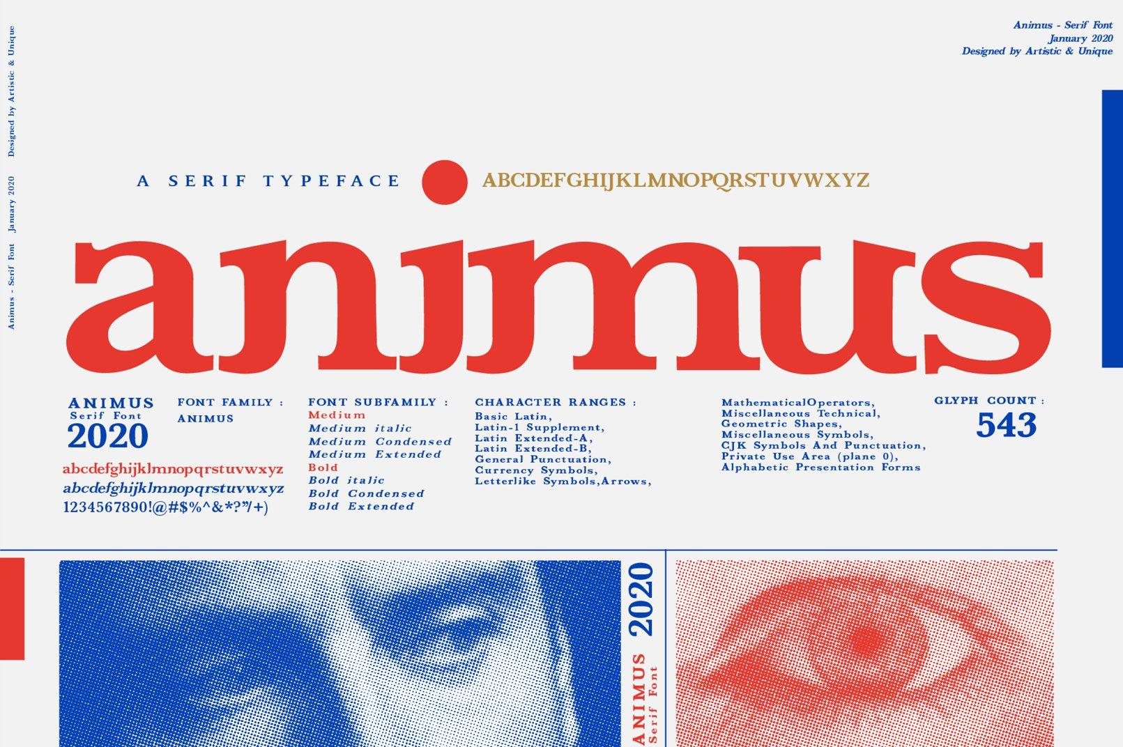ANIMUS - Serif font family example image 1