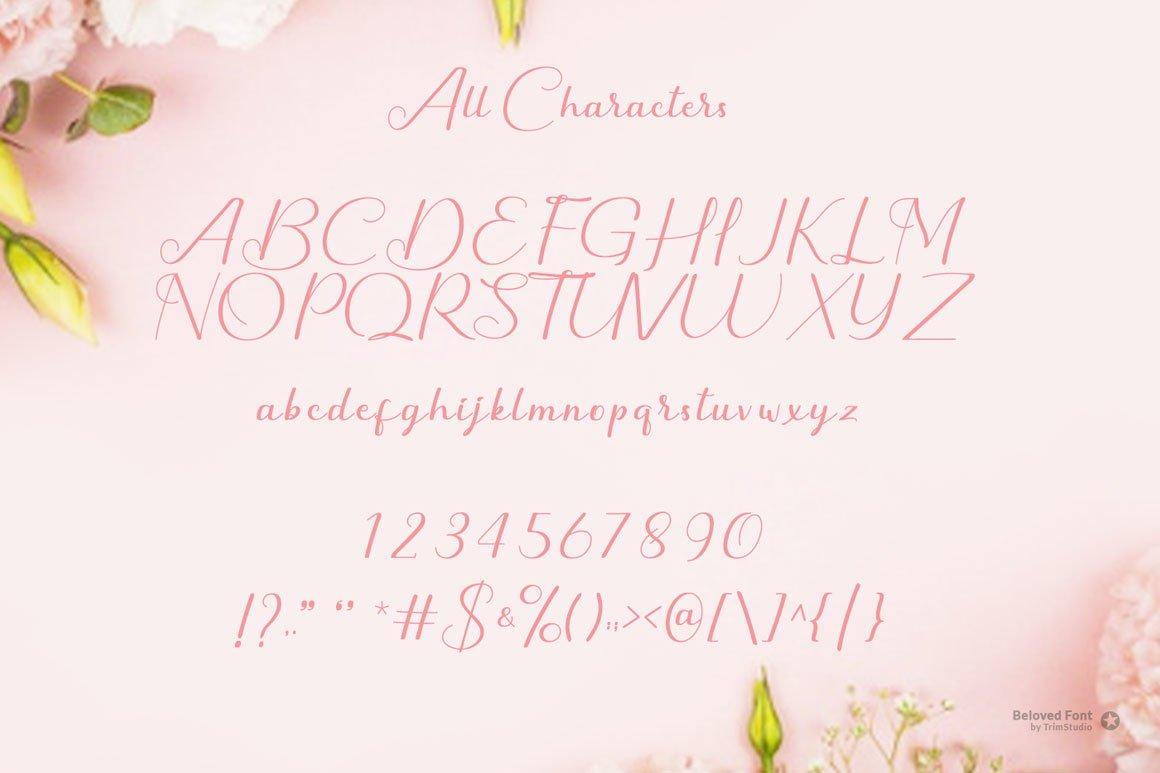 Beloved - Modern Script Calligraphy example image 6