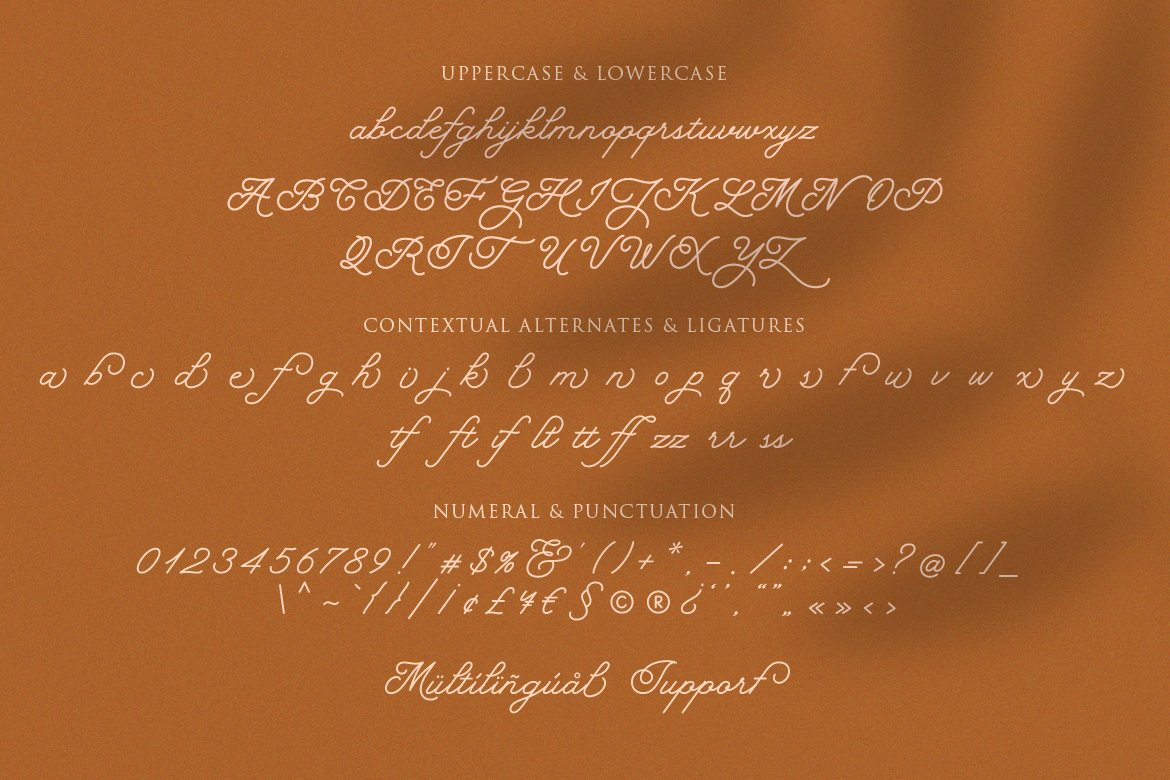 Hearty Morning - New Monoline Script example image 6