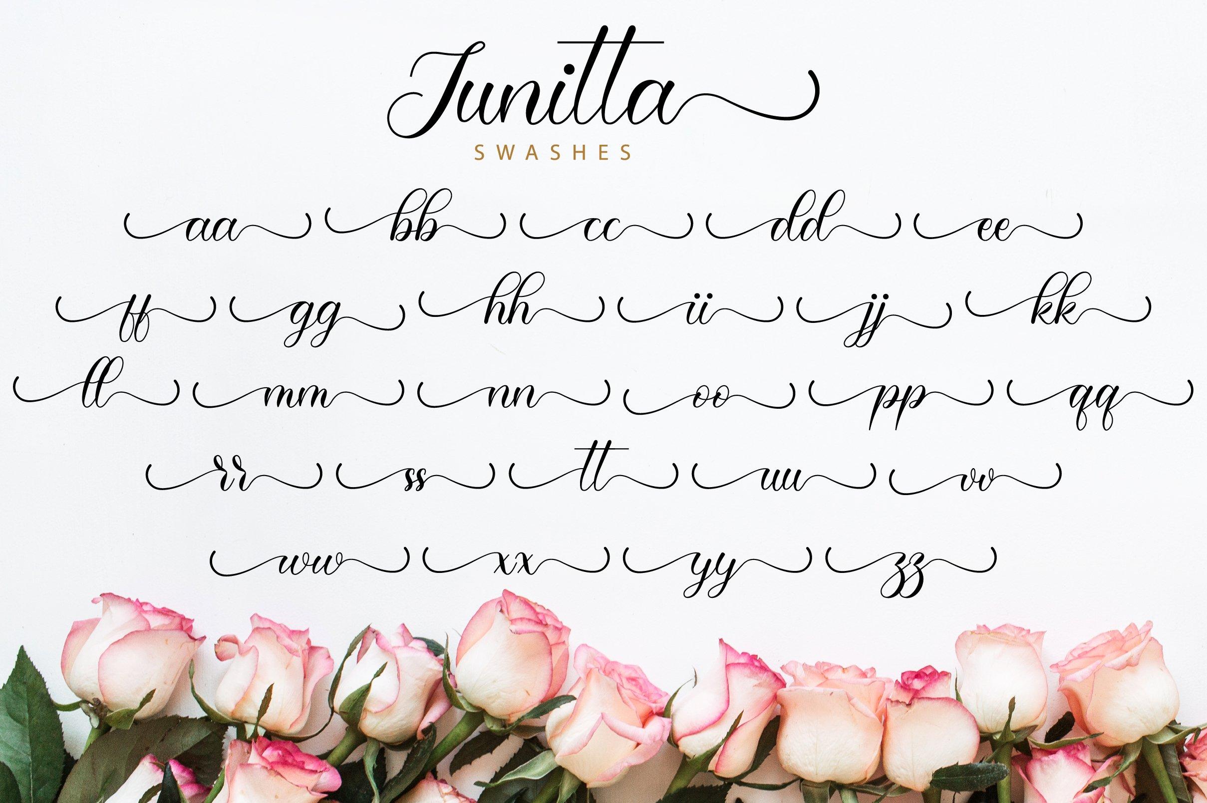 Junitta Script example image 12
