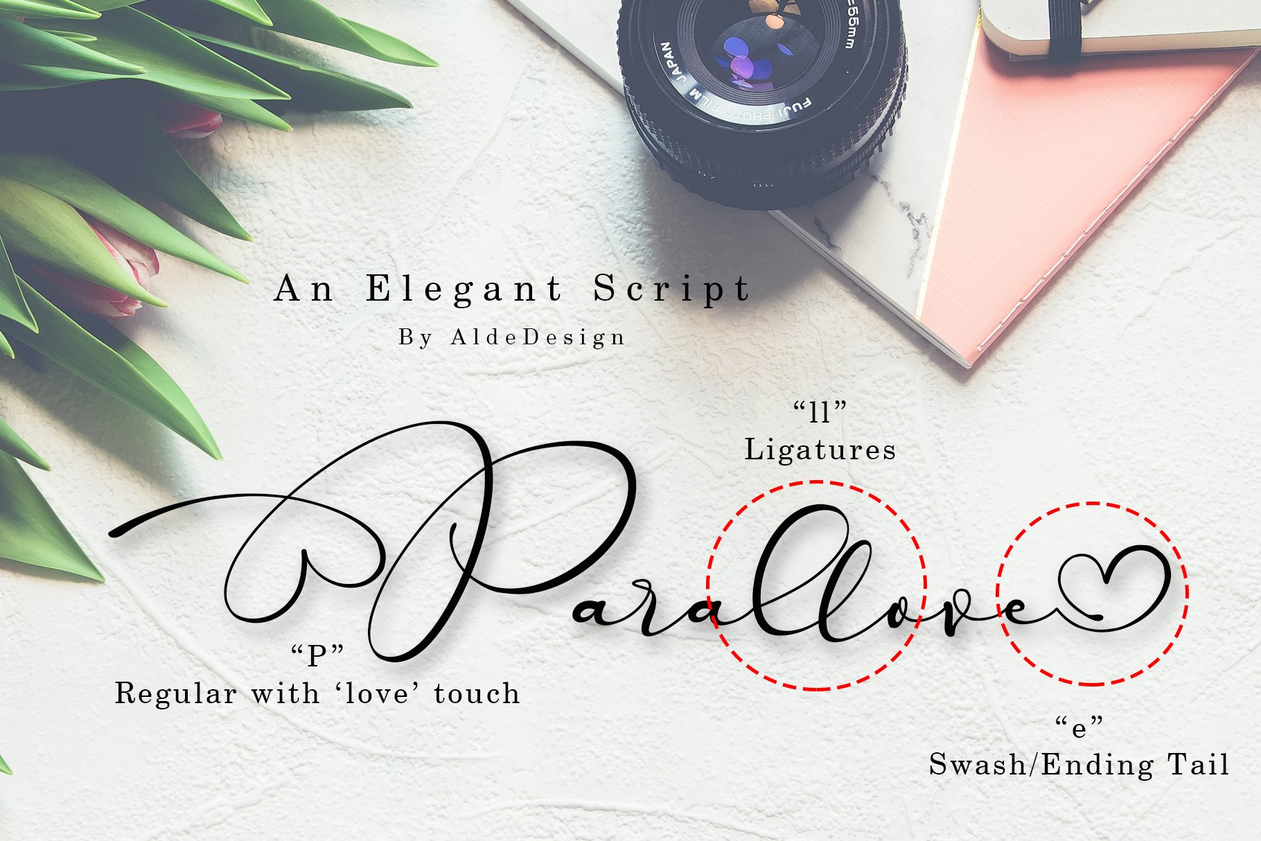 Parallove // Love Script Font example image 2