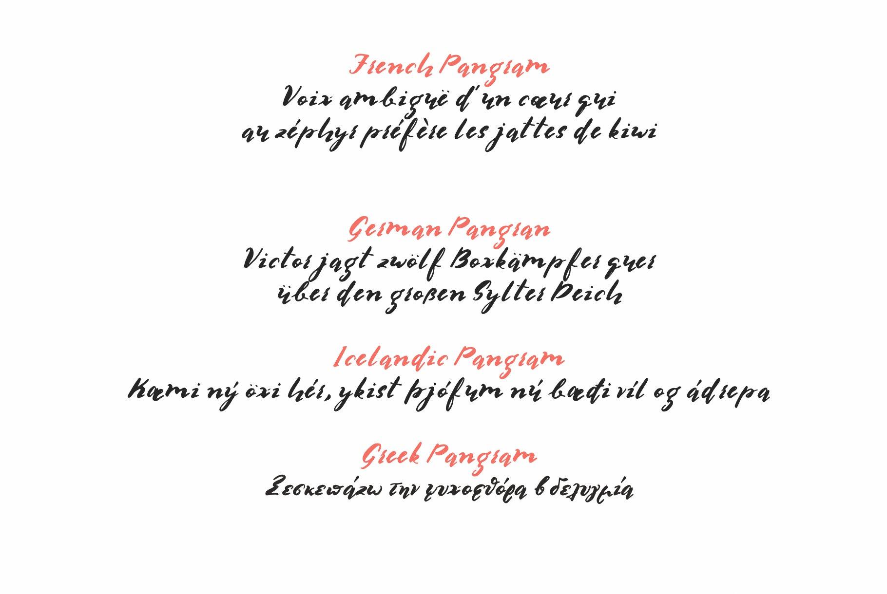 Multilingual Brush Font- Naquia Font example image 17