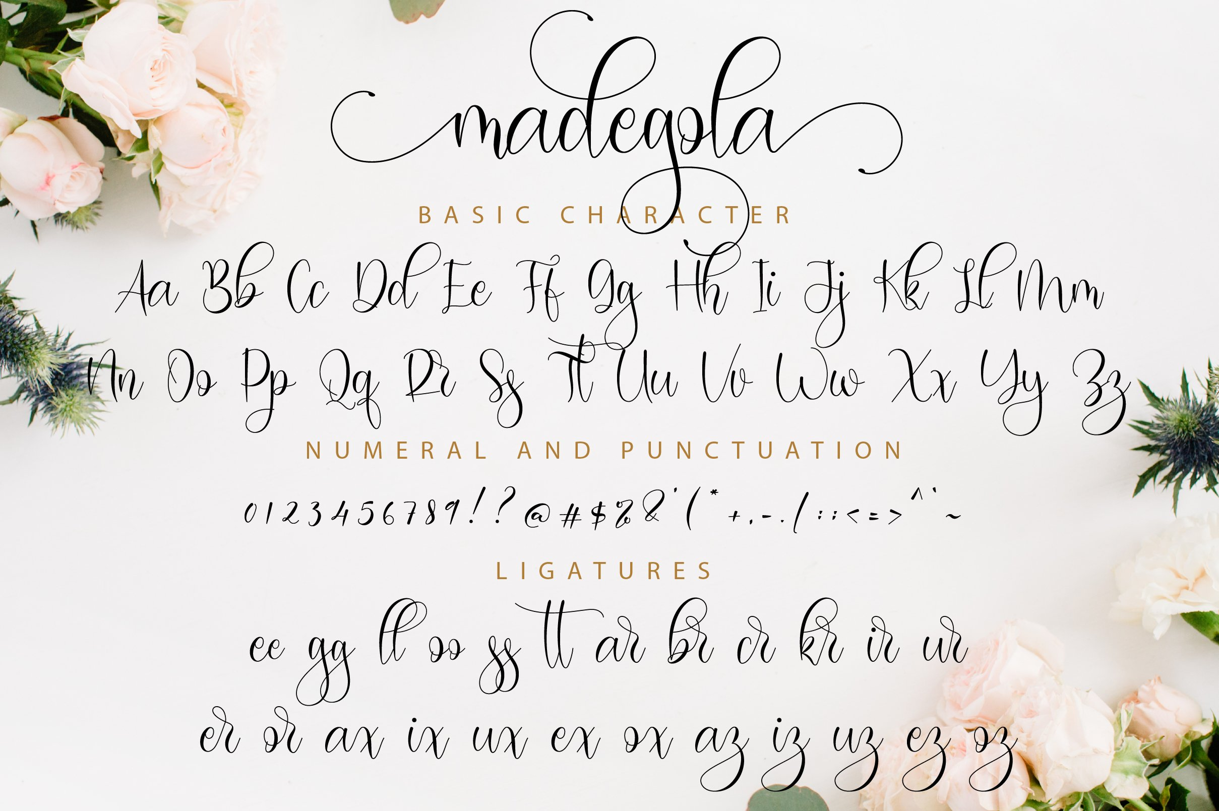 Madegola Script example image 11