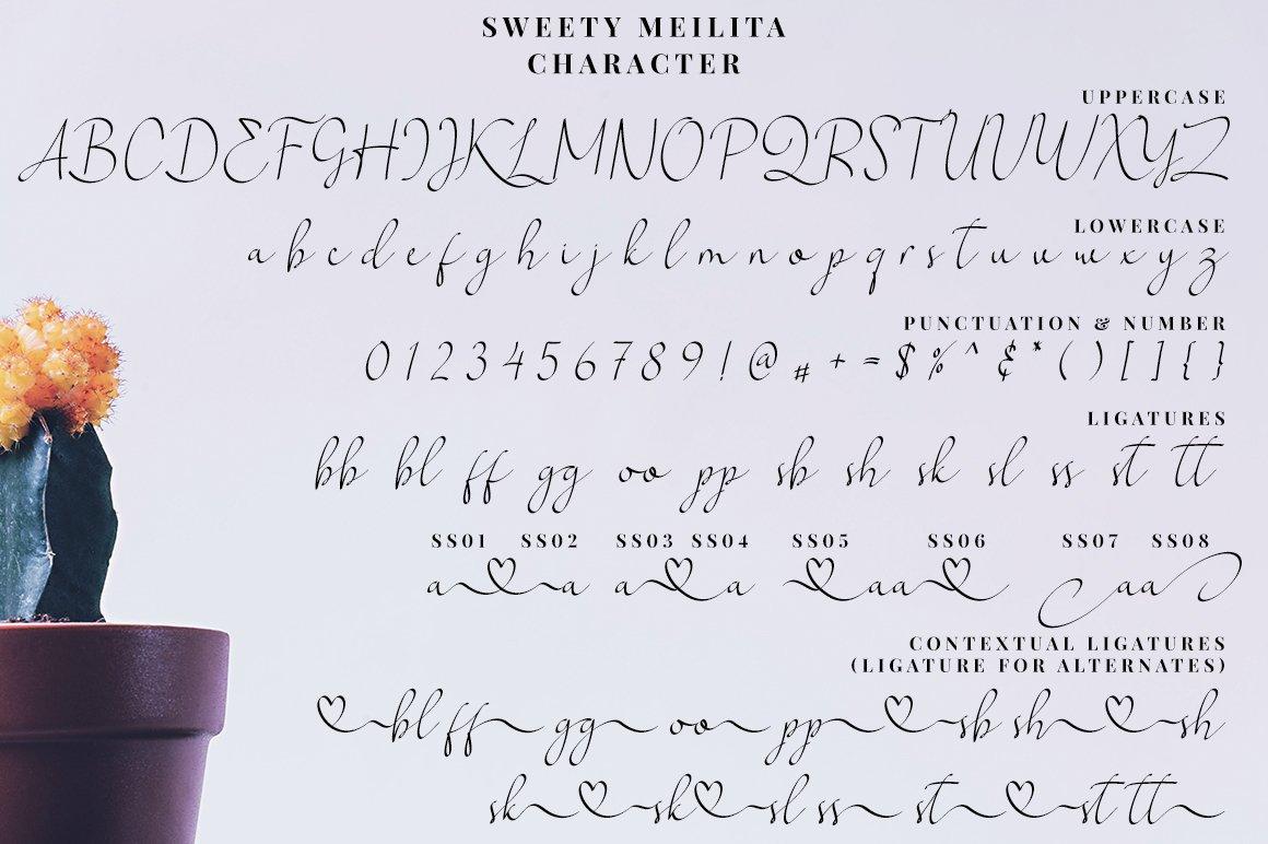 Sweety Meilita example image 7