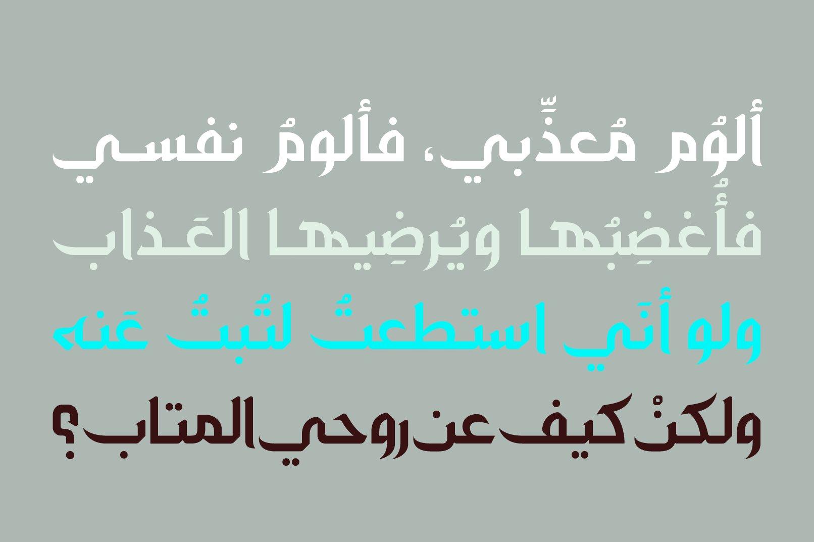 Zahey - Arabic Font example image 4