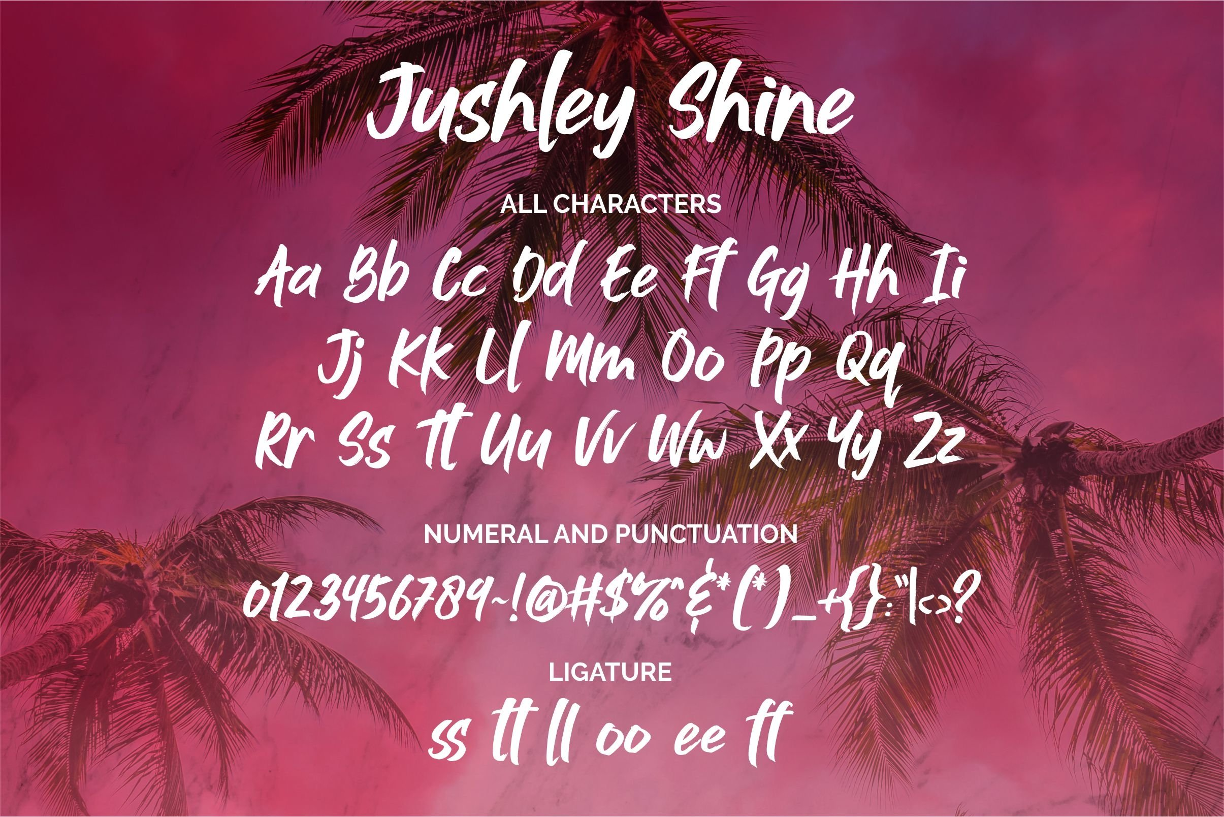 Jushley Shine - BRUSH FONT example image 3