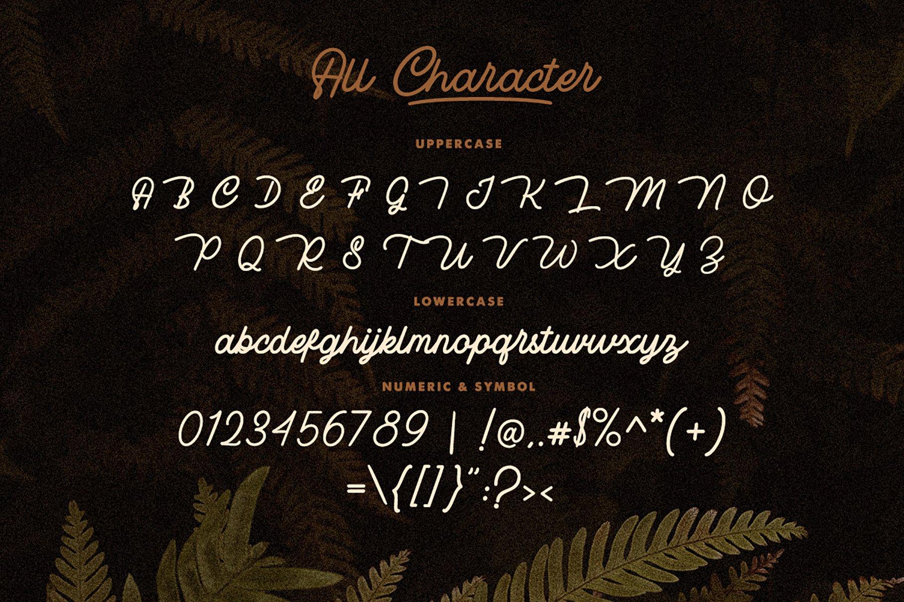 Rotherham Signature Font Typeface example image 9