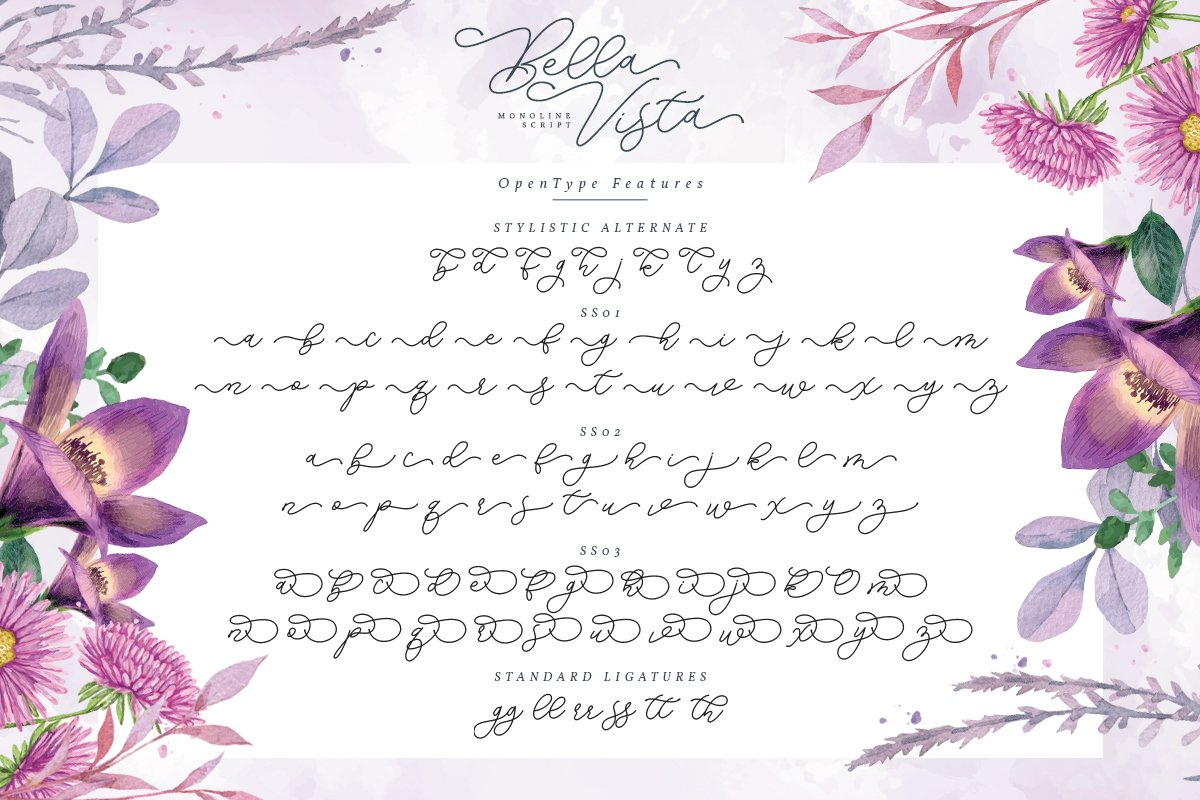 Bella Vista - Monoline Script example image 10