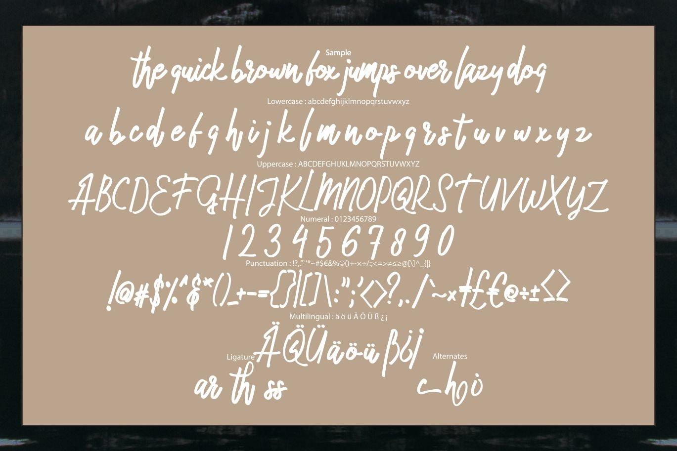 Malikec | Mono Script Font example image 6