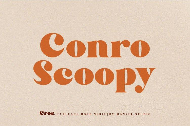 Croc. Typeface Bold Serif example image 3