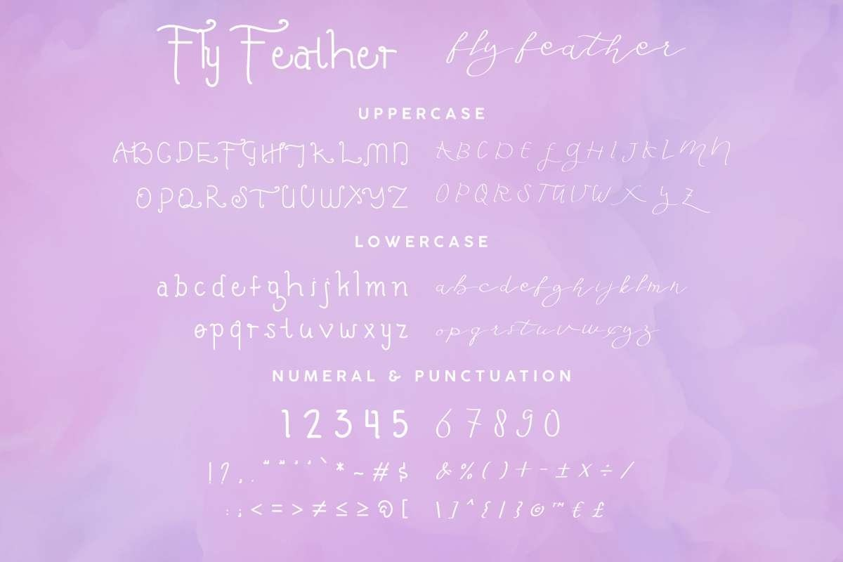 fly Feather example image 5