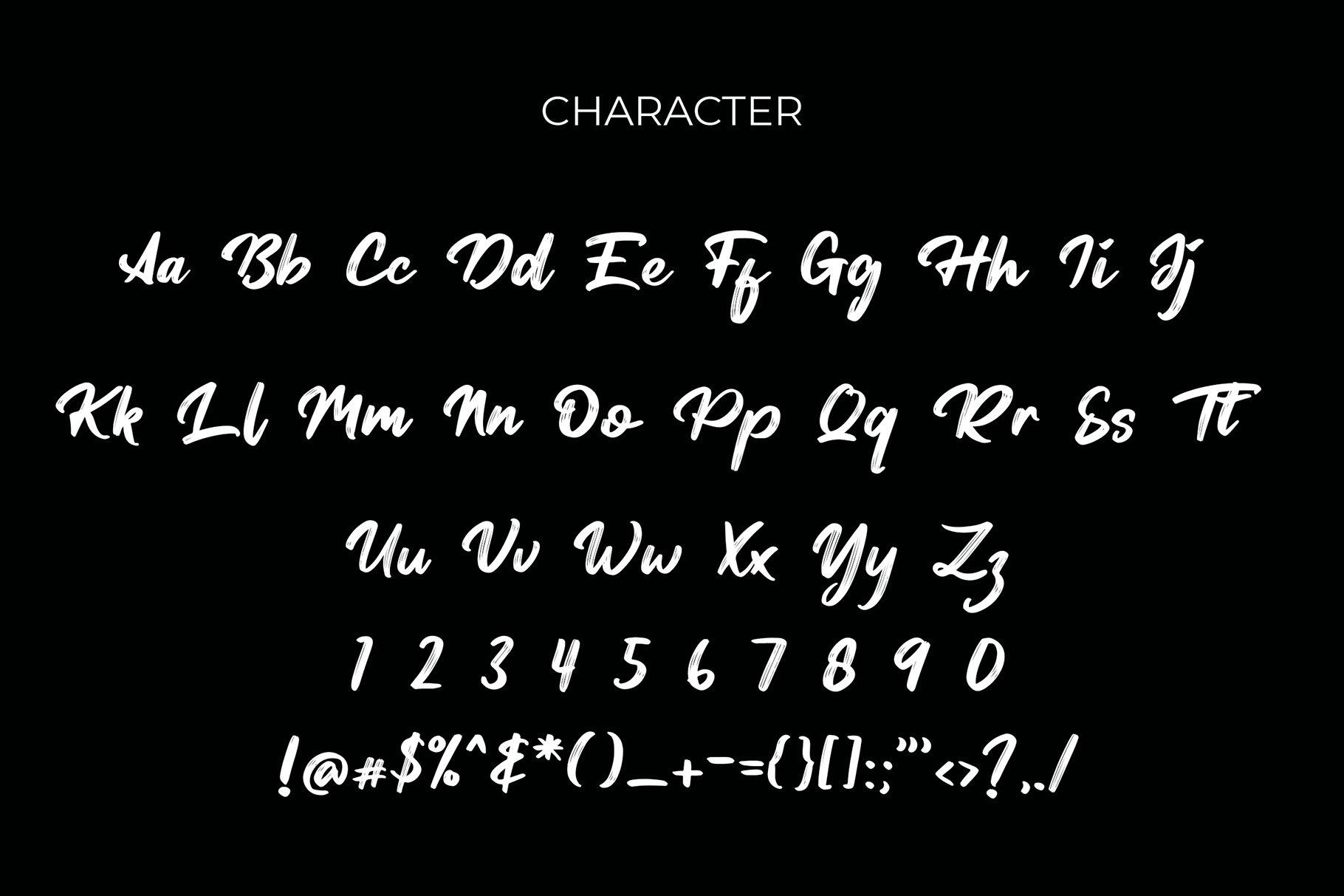 Tersanjung Modern Script Brush Font example image 6
