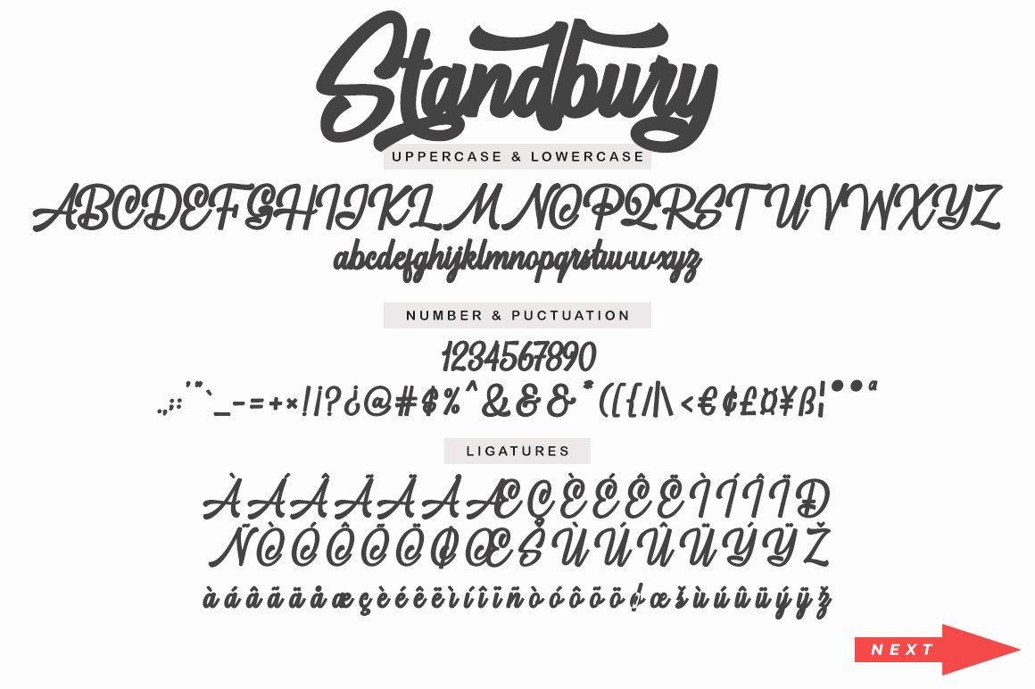 Standbury Script example image 13
