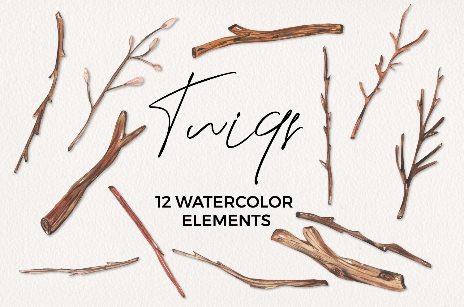 Twigs Detailed Watercolor 12 Elements Branches Wood example image 1