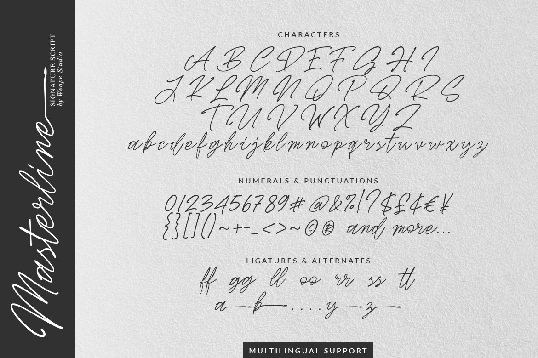 Masterline - Signature Script example image 10