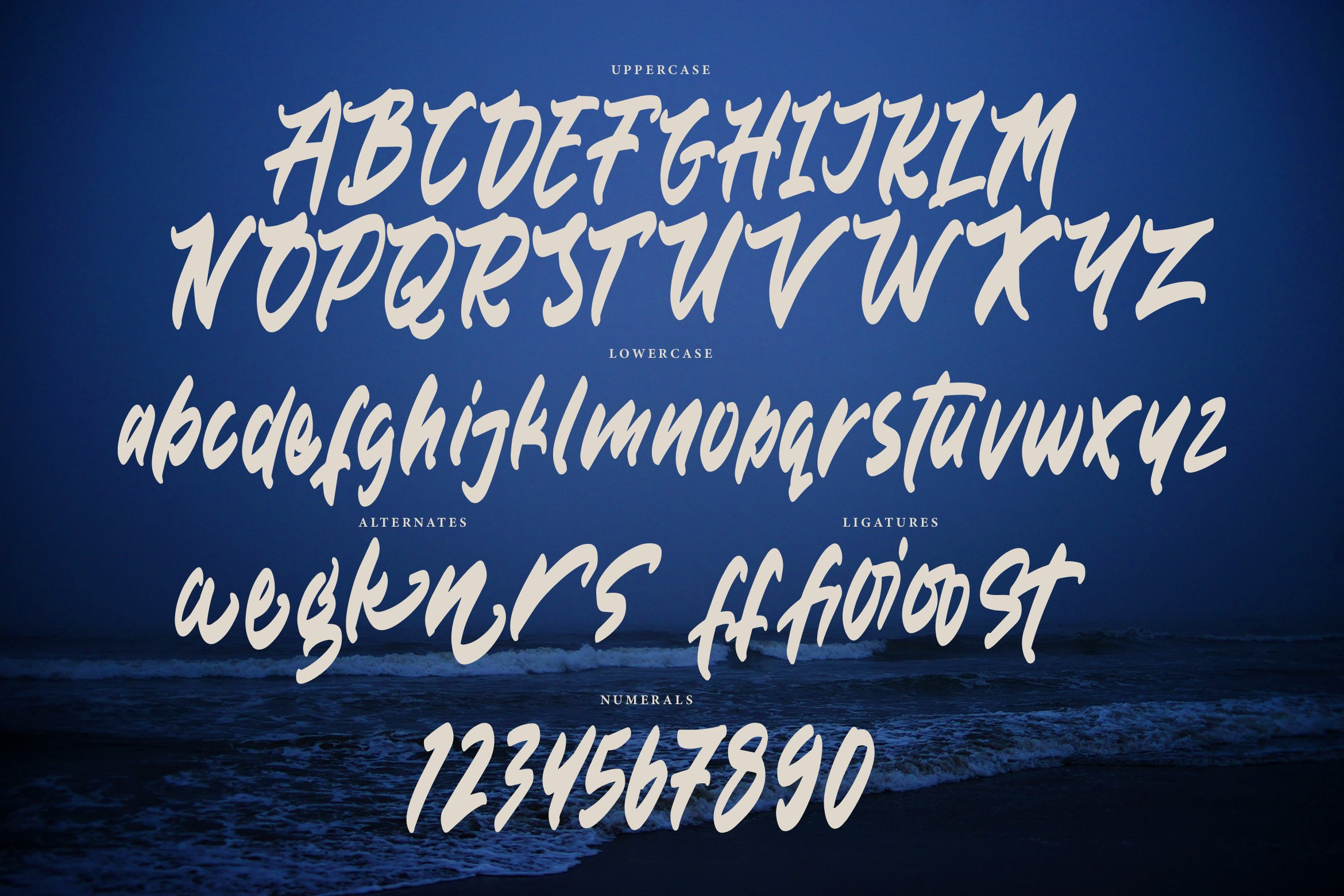 Boscout - Brush Font example image 5