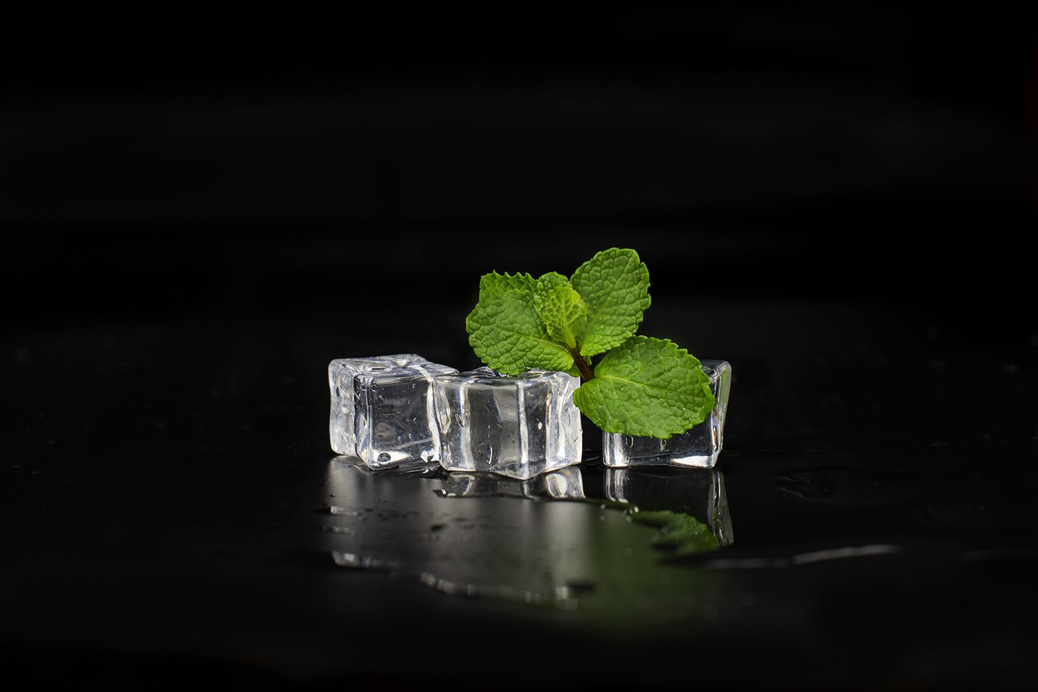 mint leaf with ice cubes with drops close-up example image 1