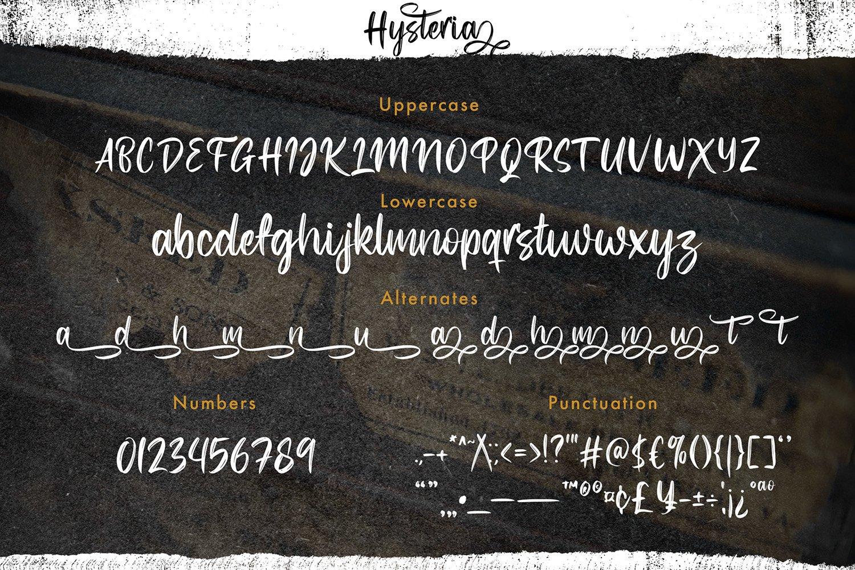 Hysteria - Stylish Script Font example image 9