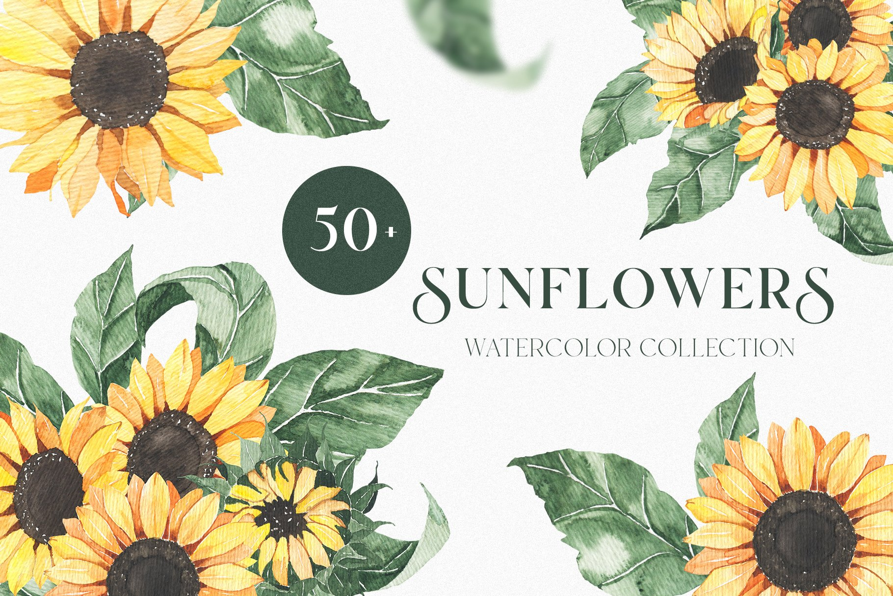 Watercolor Sunflowers collection example image 1