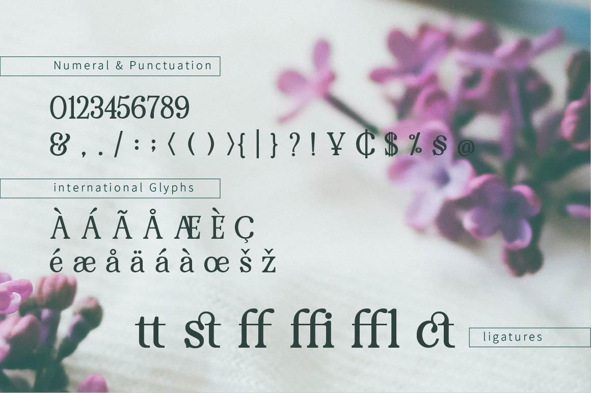 RENDA - Serif example image 2