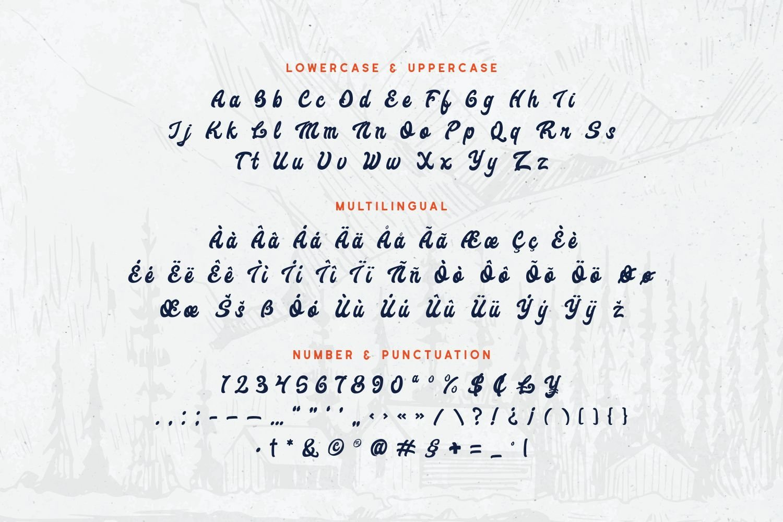Angerpinal - Bold Script Font example image 5