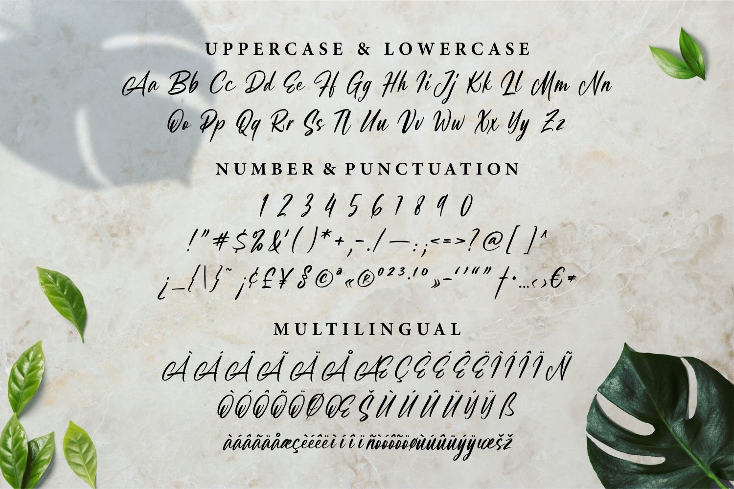 Shafromes - Handwritten Font example image 5