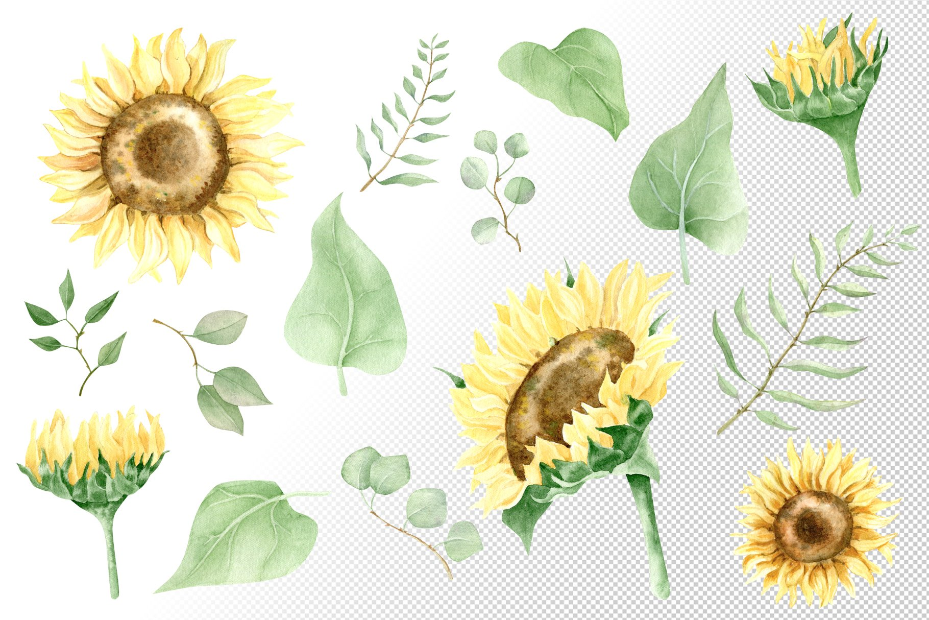 Watercolor sunflower. Rustic yellow flowers clip art. example image 3