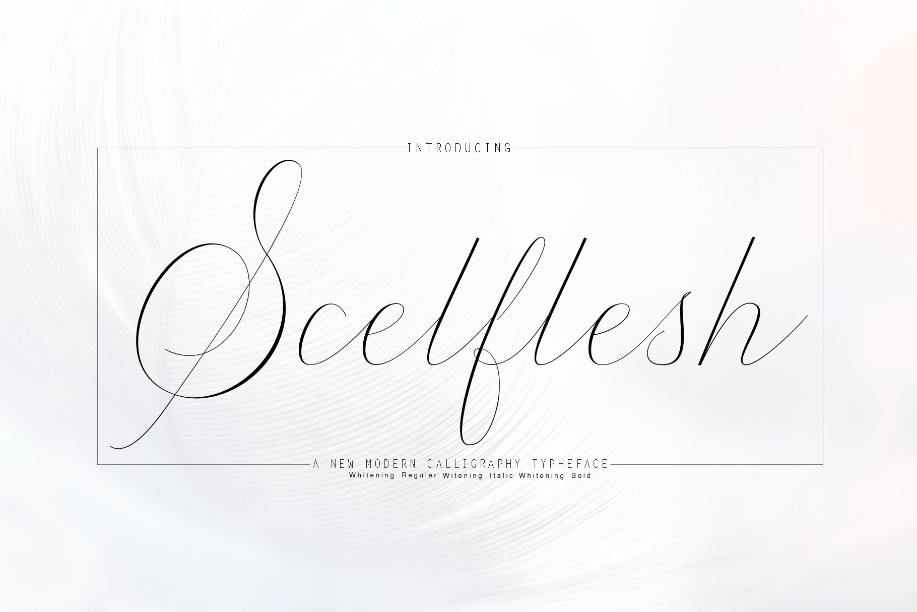 12 graceful charming fonts example image 11