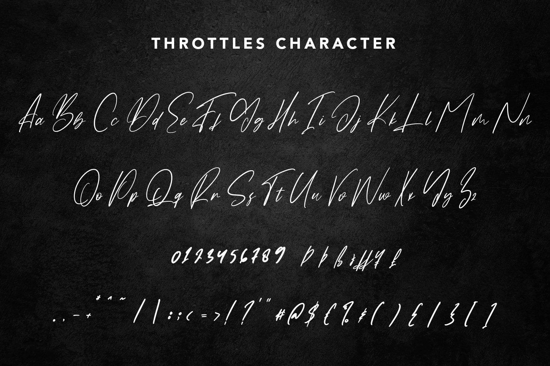 Throttles - Signature Font example image 7