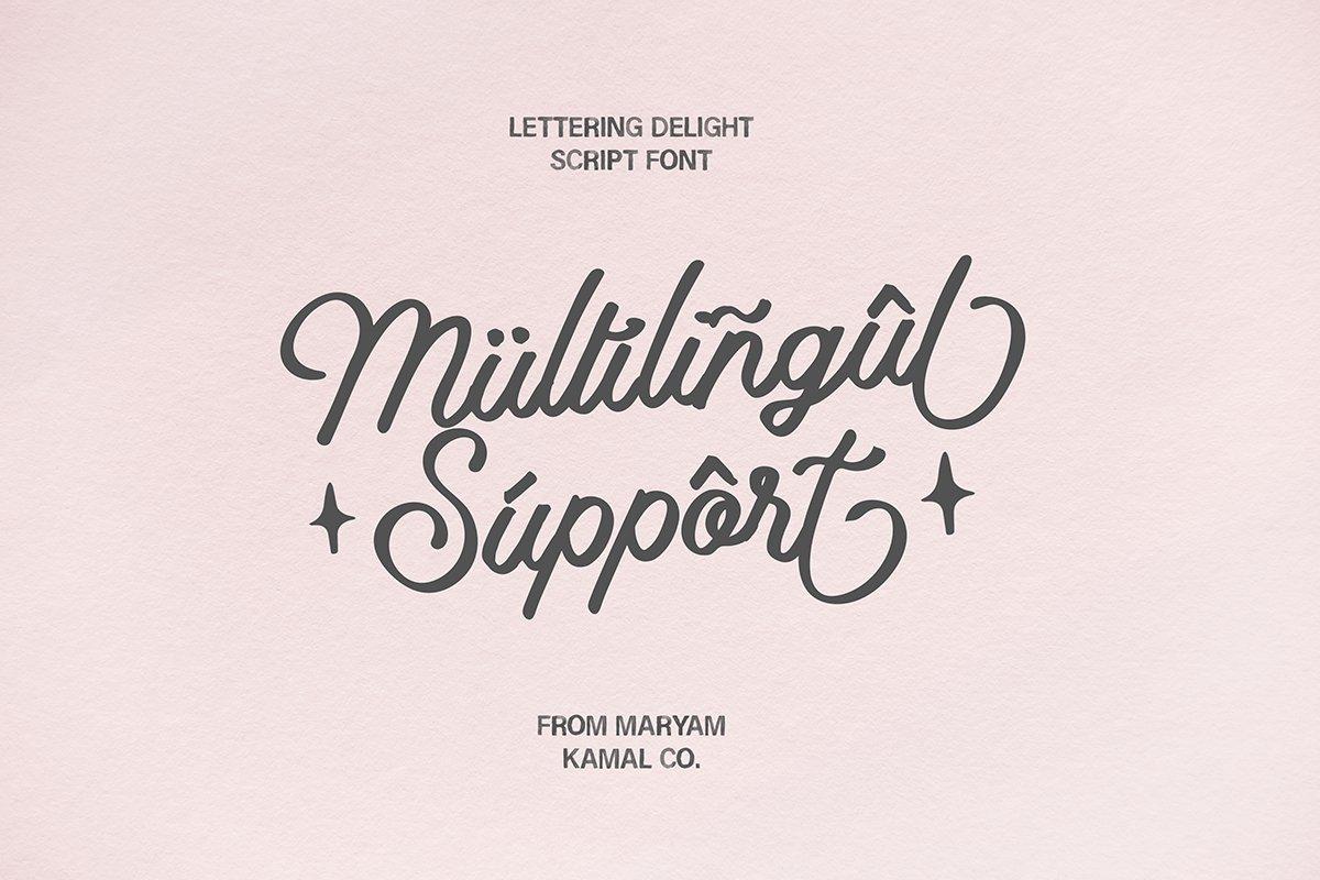 Lettering Delight Script Font example image 10