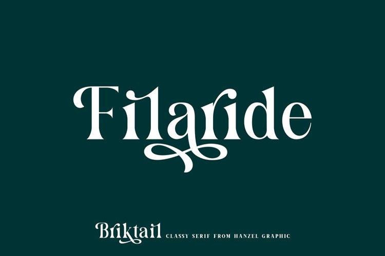 Briktail//Modern Serif Font example image 2