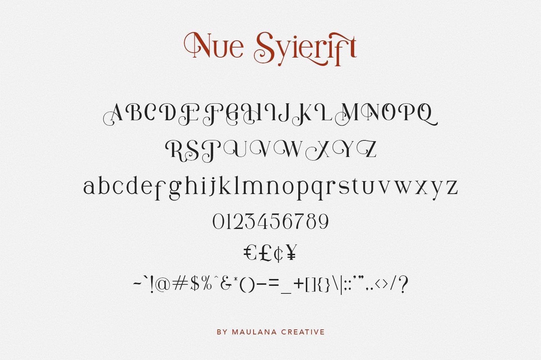 Nue Syierift - Playful Serif Font example image 4