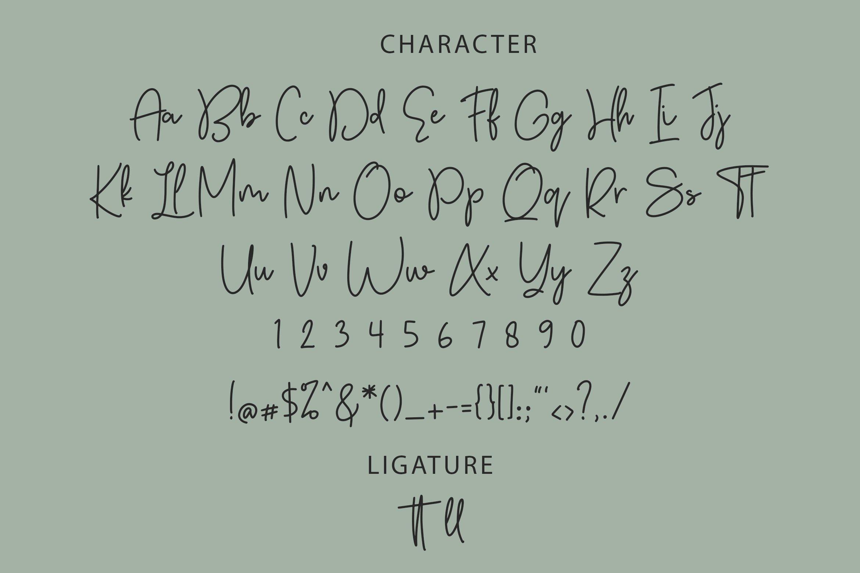 Autumn Fairy Signature Monoline Font example image 4