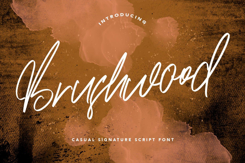 Brushwood - Signature Script Font example image 1