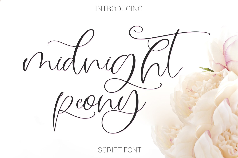 Midnight Peony Script Font example image 1