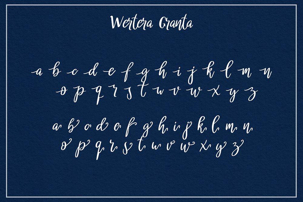 Wertera Granta example image 8