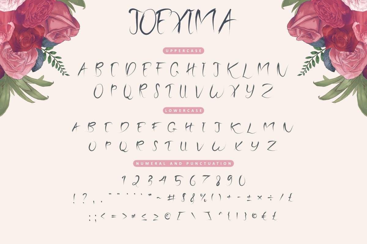 Joexima example image 5