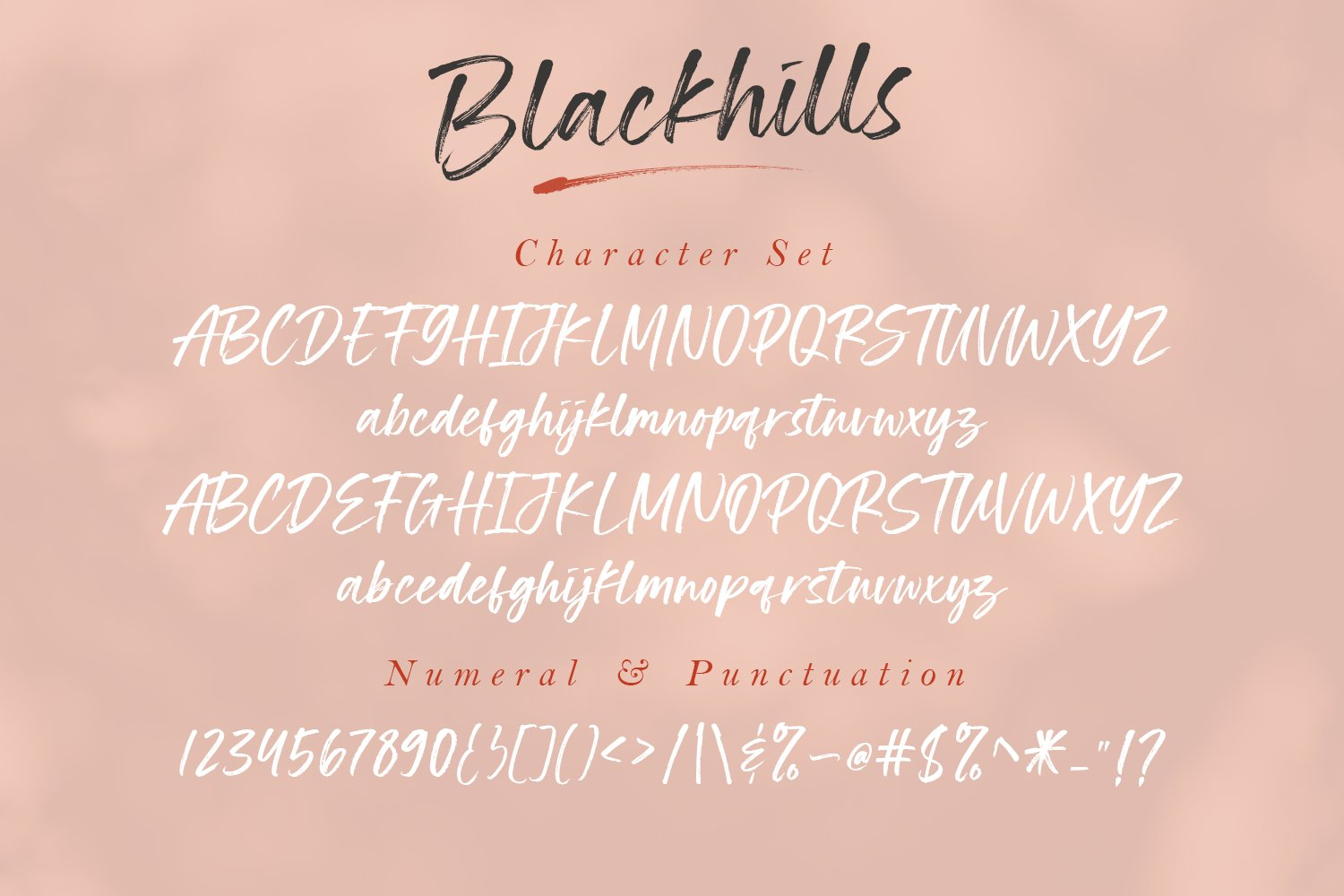 Blackhills - Brush Fonts example image 15