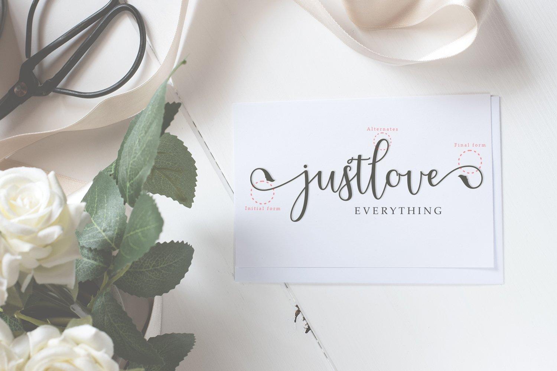 Melliste Script   A Font Love Story example image 3