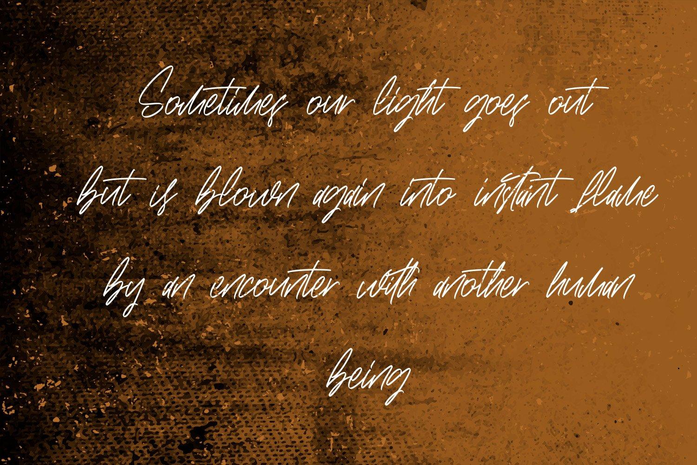 Brushwood - Signature Script Font example image 5