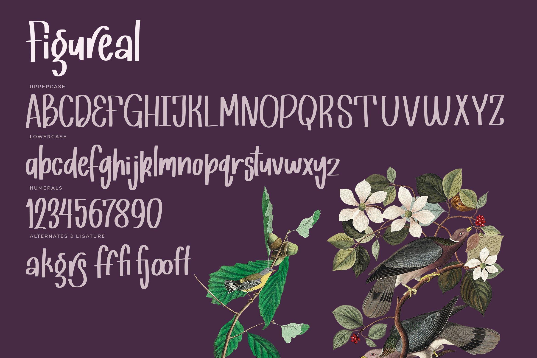 Figureal - Hand Drawn Sans Font example image 2