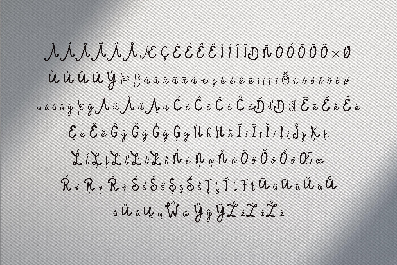 14 Fonts bundle vol.3 example image 14