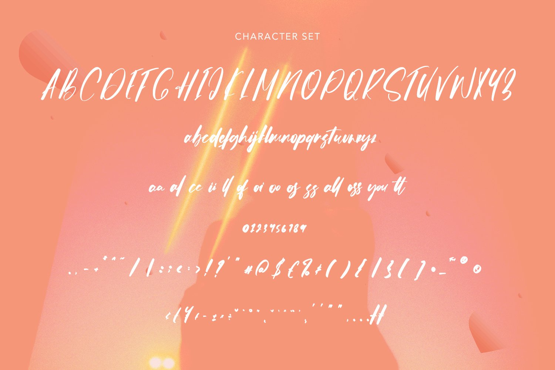 Gossiped - Signature Font example image 5