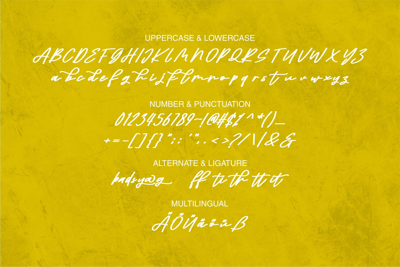 Adhitya - Beauty Script Font example image 2